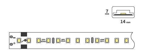 ال ای دی نواری سفید باریک 5 و 8 میلیمتر چیپ 2835 تراکم 120 ال ای دی در یک متر. عرض : 8 میلیمتر و 5 میلیمتر